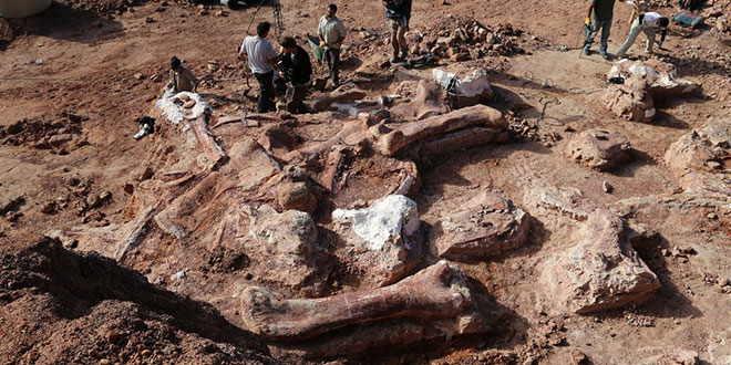 cel-mai-mare-dinozaur 17 mai