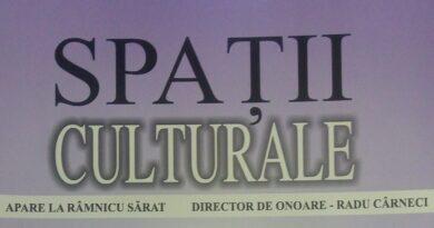 Spații culturale nr. 58 (10)
