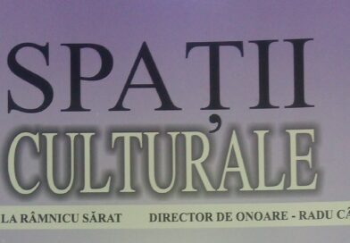Spații culturale nr. 74 (13)